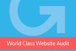 World Class Website Audit